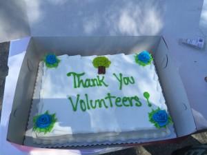 VA_cake