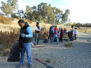 Volunteers hand weeding