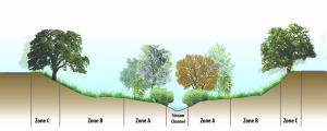 Habitat zones at Stanley Reach