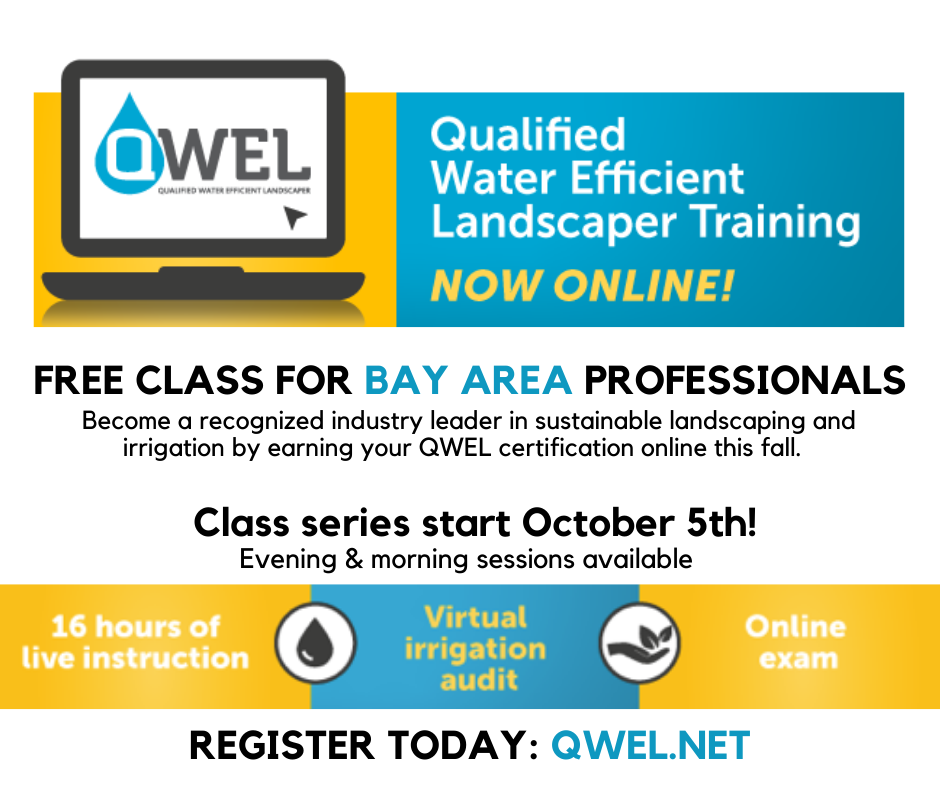 Earn Your Qwel Certification Online This Fall Living Arroyos